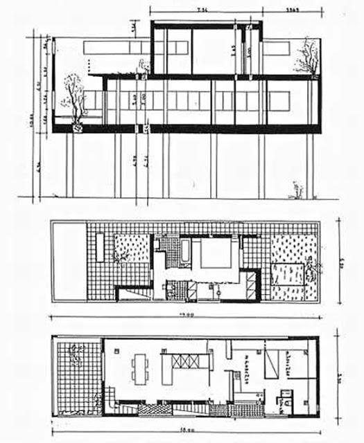 casa_zampe_piante_sezione.jpg