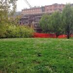 2014-04-03 Parco Anfiteatro 13