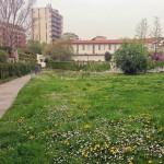 2014-04-03 Parco Anfiteatro 22