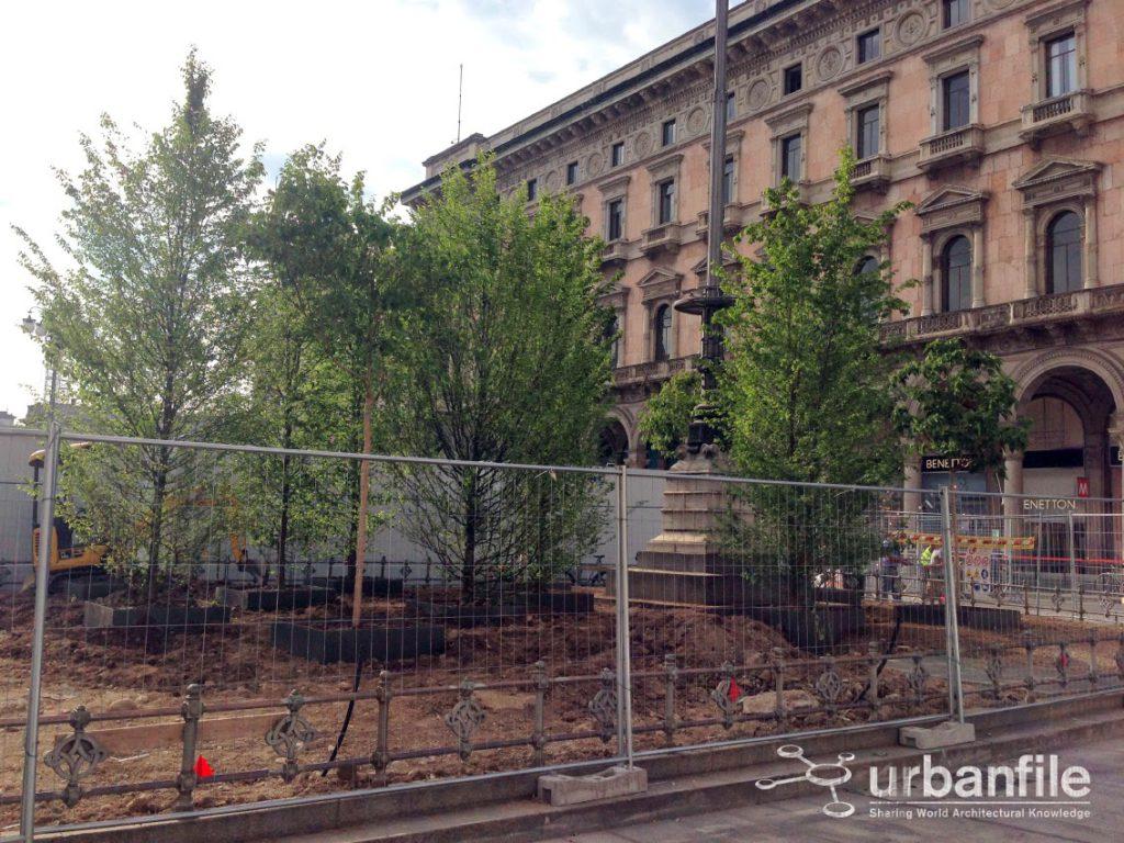 2014-05-22 Duomo Alberi 7