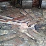 XD 7 - I marmi policromi che cesellano il pavimento