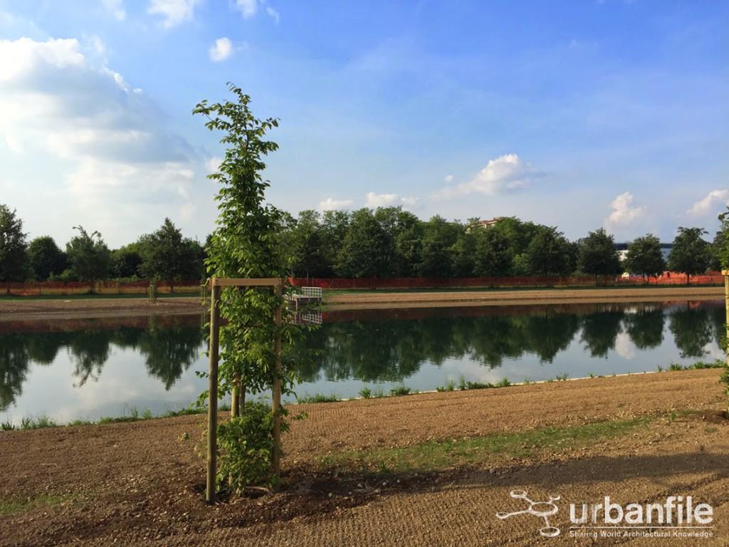 2015-05-17_Parco_Nord_Lago_3