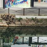 2015-09-15_Naviglio_Arbusti_1.jpg