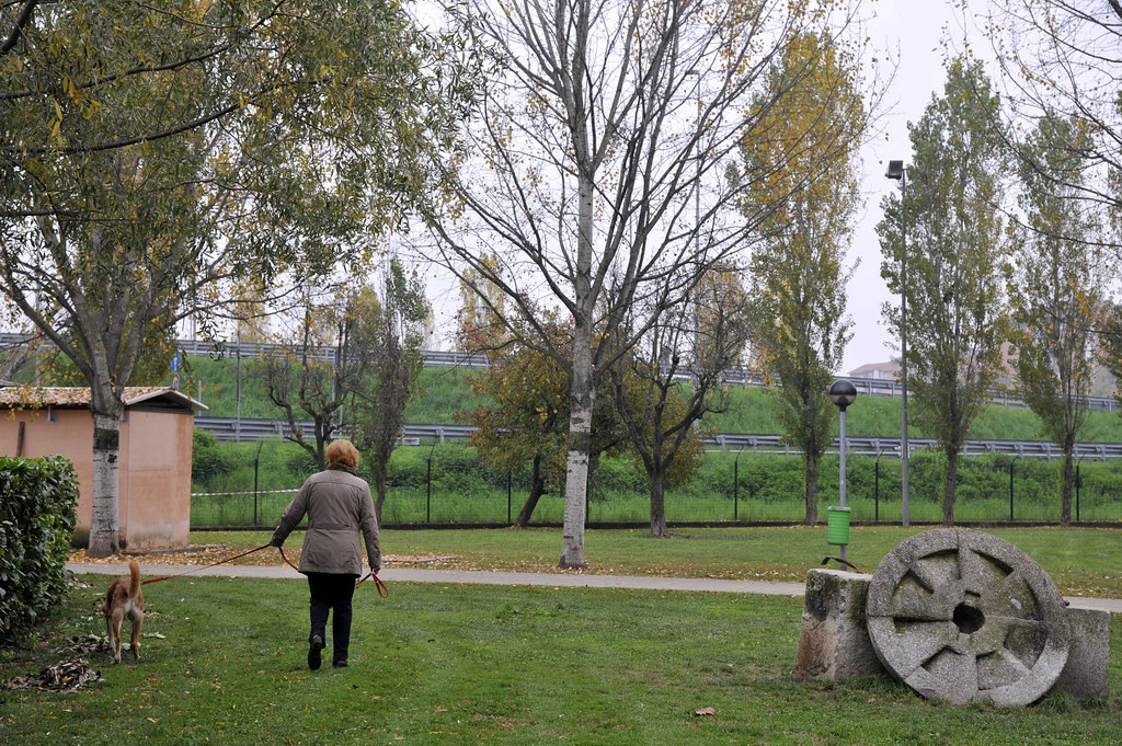 2015-11-16_Parco_Canile_6