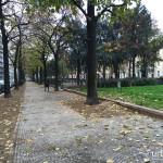 2015-11-21_Benedetto_MArcello_1