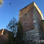 2015-11-24_Pusterla_Sant_Ambrogio_1