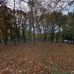 Milano_Orto_Botanico_Niguarda_1