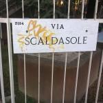 2015-12-18_Via_Scaldasole_0
