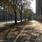 2015-11-08_Citta_Studi_4