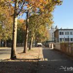 2015-11-08_Citta_Studi_7