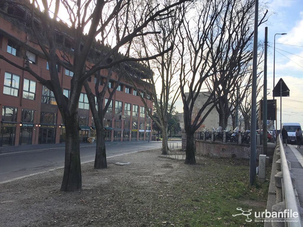 2016-01-20_Ripa_Porta_Ticinese_Alberi_1