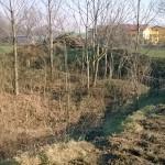 2016-01-21_Parco_Forlanini_2