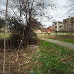 2016-02-29_ROssi_Parenzo_22