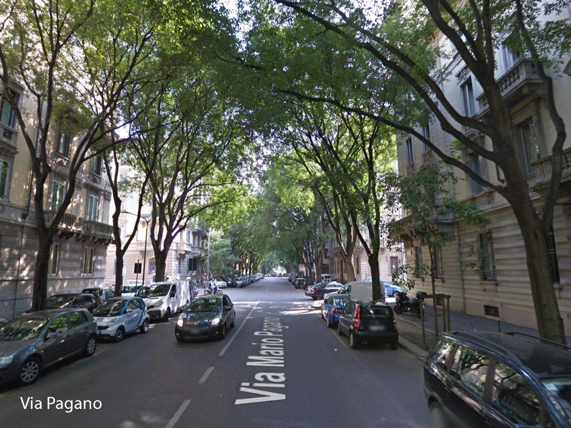 Milano dove piantare alberi a milano urbanfile blog - Alberi adatti per viali ...