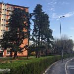2016-03-20_Quartiere_Forlanini_12