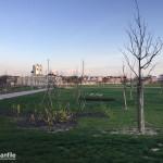 2016-03-29_Baggio_Parco_Fontanili_Cassinazza_28