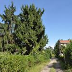 borgo-morsenchio_6163206523_o