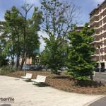 2016-05-02_Santa Rita_3