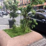 2016_Corso_Buenos_Aires_15C
