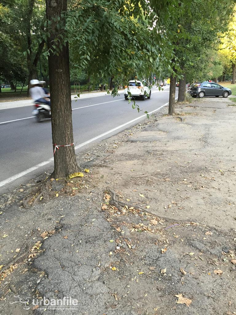 2016-09-06_Ciclabile_Sempione_21