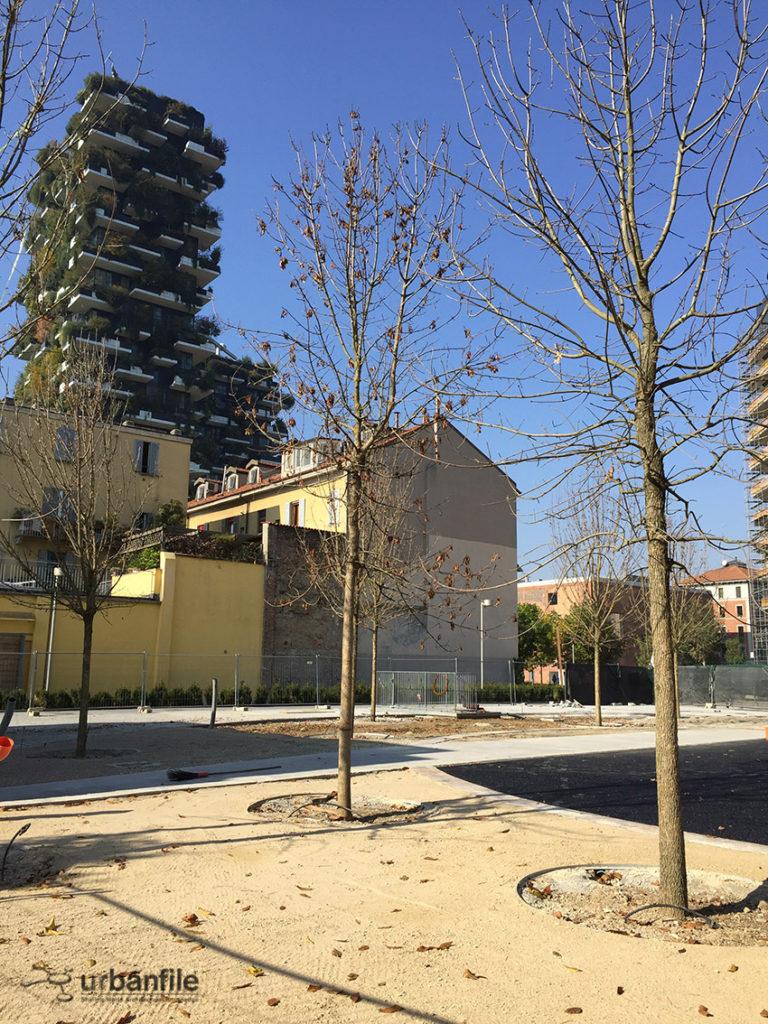 2016-10-29_biblioteca_alberi_isola_20