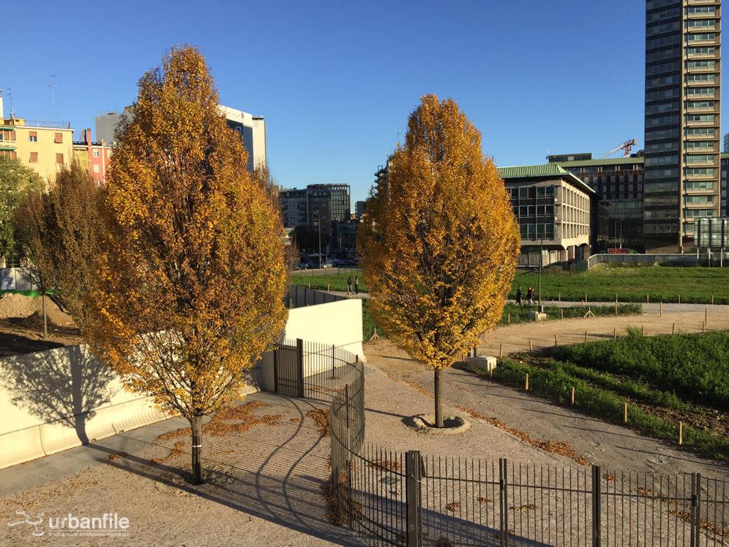 2016-11-12_biblioteca-degli-alberi_26