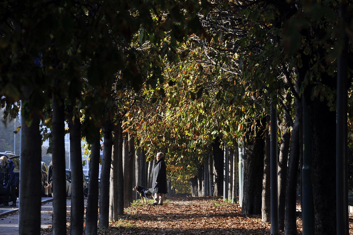 Milano eventi i colori dell 39 autunno nelle foto del - Bastioni di porta venezia ...