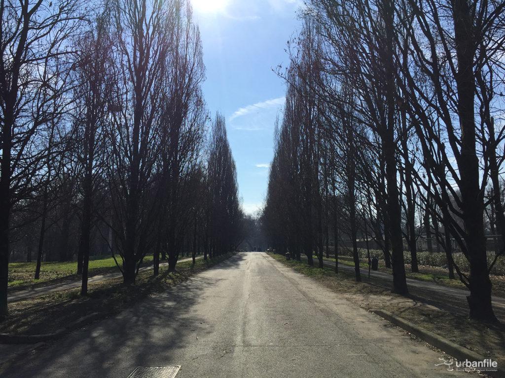 2017-02-26_Parco_Lambro_9