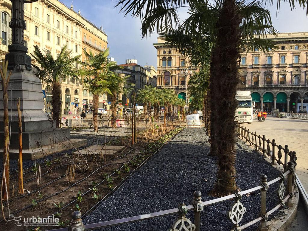 2017-03-06_Piazza_Duomo_Palme_2