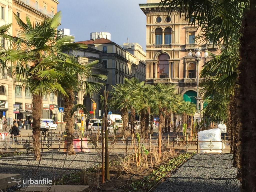 2017-03-06_Piazza_Duomo_Palme_3