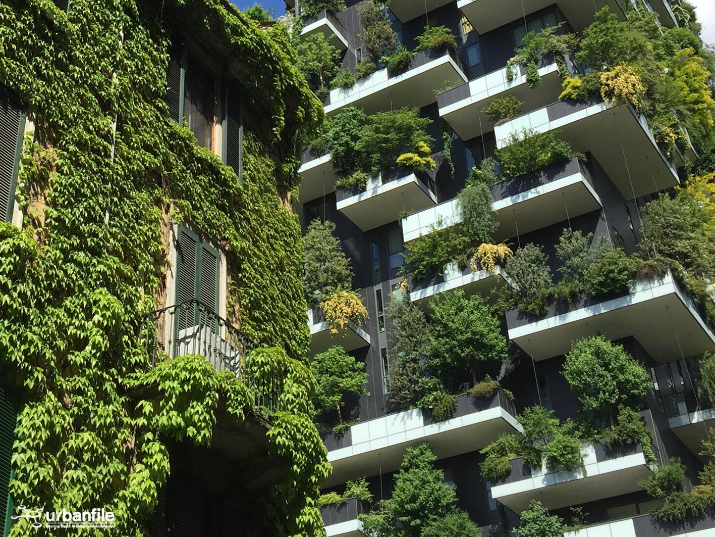 Milano isola il verdeggiante bosco verticale urbanfile blog
