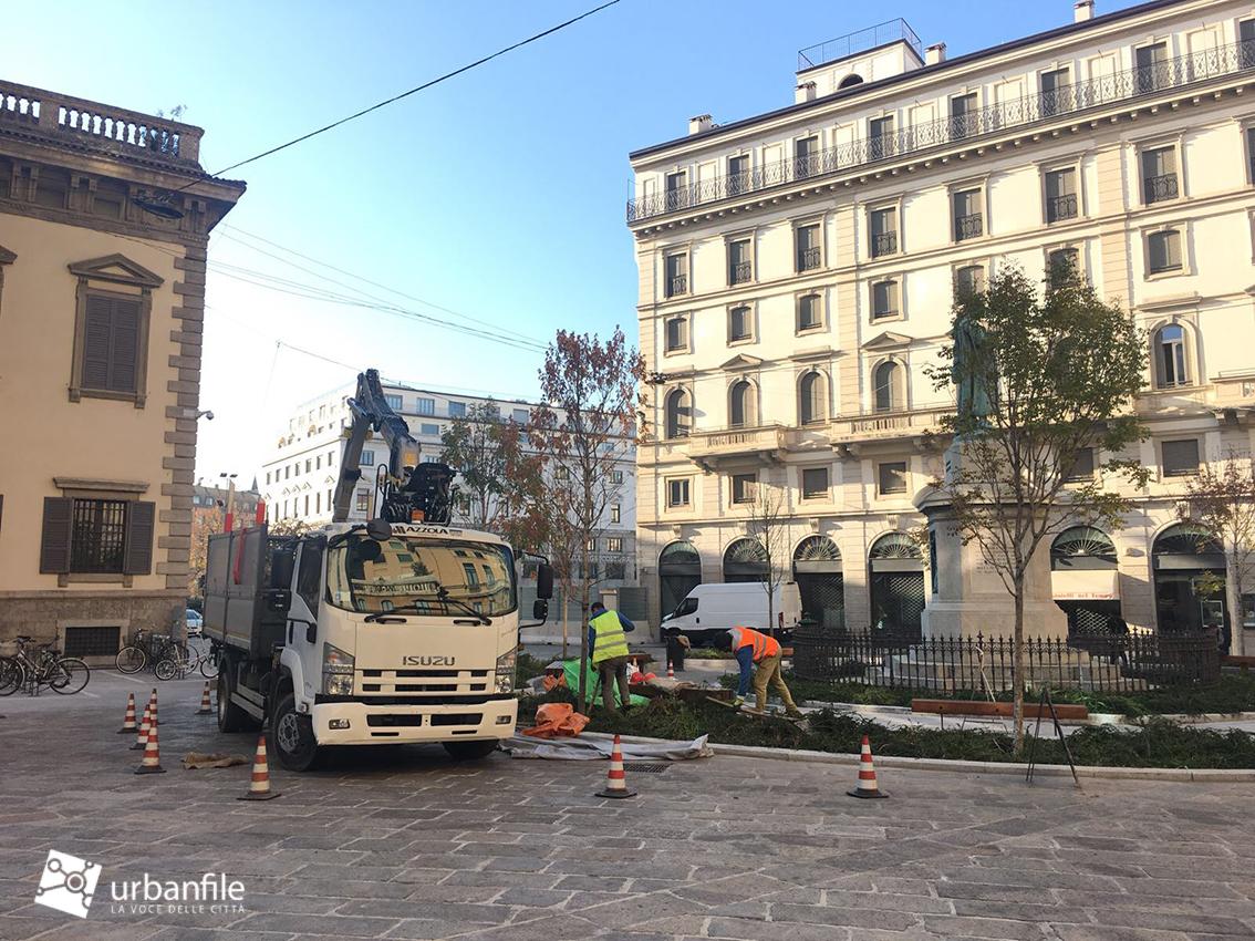 Milano pasquirolo sostituiti gli alberi secchi di for Piazza beccaria