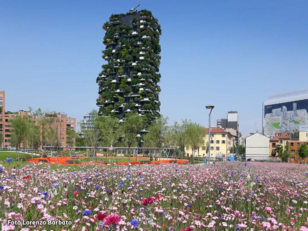 Milano isola il bosco verticale continua a riscuotere - British institute milano porta venezia ...