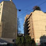 2016-01-06_Parete Cieca Crocetta_1