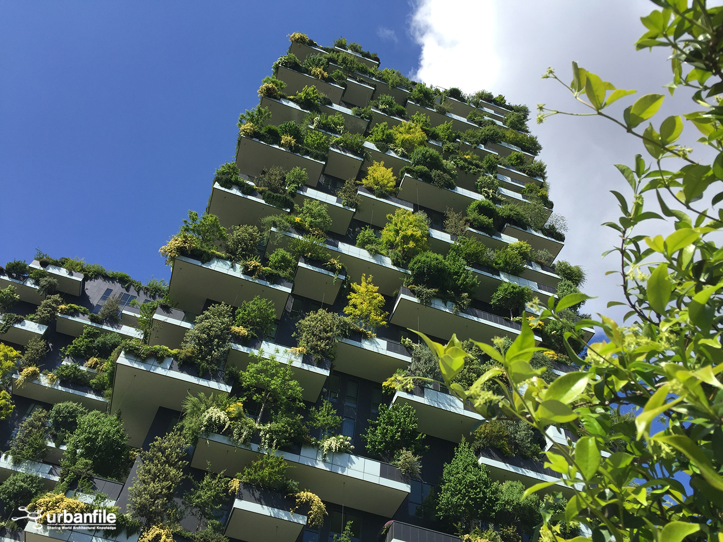 Foto Bosco Verticale Milano milano   isola - il verdeggiante bosco verticale - urbanfile